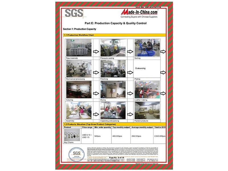 SGS - SUPPLIER ASSESSMENT REPORT